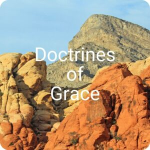 FPC Troy What We Believe Doctrines of Grace